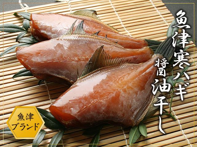 カワハギ醤油干し(ウマヅラハギ)  干物